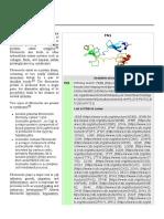 Fibronectin.pdf