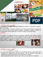 REGION ANDINA-F.pptx