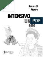 SIU Practica 01 - Álgebra.pdf