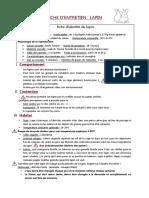 Fiche-Lapin-Vetovie.pdf