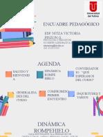 Encuadre Pedagogico d. Integral II