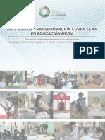 Proceso de cambio curricular-educ media.04.07.16 (1) (1)