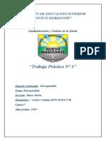 TP Nº1 CASTRO CRISTIAN.docx