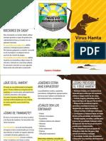 04-Folleto-Hanta imprimir