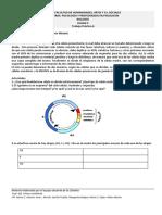 TP 6 mitosis y meiosis 2019.pdf