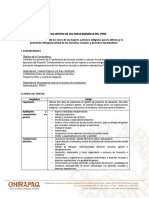 Convocatoria Responsable de Proyecto CHIRAPAQ-ECMIA-UNFPA
