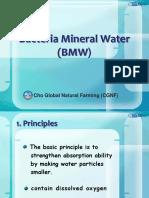 Bacteria-Mineral-WaterBMW