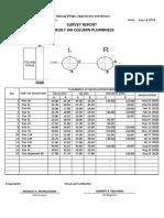 Survey Report (As-Built) for Columns Plumbness