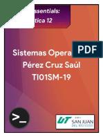 Práctica 12 - Pérez Cruz Saúl