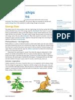 Food chain and Food Web.pdf
