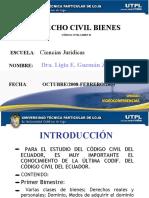 Derecho civil bienes introducción - Ligia E. Guzmán