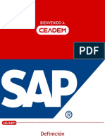 SAP_-_Online_(1).pdf