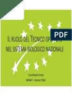 SANA 2019 Pres_Cafiero.pdf