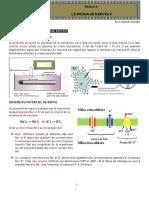 RESUME-MESSAGE-NERVEUX-pdf (1)