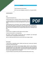 MANUAL DE USO DO DRONE