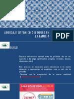 Abordaje Sistémico del Duelo - 8va AVIFS DMSF HHV - Lizardo Rodríguez 15-07-2020