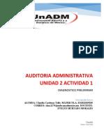 Audit u2 a1