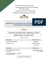 mémoire fin 0123.pdf