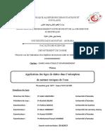 These-Nouacer-Sana.pdf.pdf