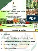 Comercialização-de-carnes.-Américo-da-Conceição.pdf