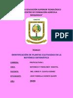 PRACTICA 4 IDENTIFICACION DE LAS PLANTAS CULTIVADAS