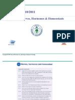 Bio 11 - Nerves & Hormones Powepoint