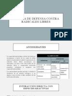 SISTEMAS DE DEFENSA CONTRA RADICALES LIBRES