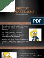 ADJETIVOS PRIMERA CLASE