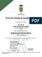 952700476611CC1079389852C.pdf