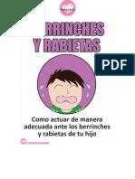 Berrinches y Rabietas (Como actuar de manera adecuada ante los berrinches y rabietas de tu hijo).pdf