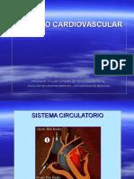 Cardiovascular _1.pdf