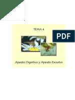 Tema 4. Aparato digestivo y aparato excretor
