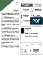 Formato_2018_idec_Vida_Nueva_bosquejo_08