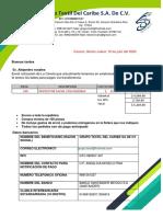 CARETA DIADEMA.pdf