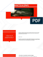 PAP1-fusionado