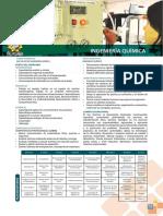 Ingenieria-Quimica.pdf