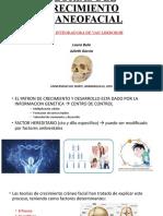 TEORIAS DEL CRECIMIENTO CRANEOFACIAL.pptx