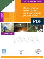RECOS STRRES N°11.pdf