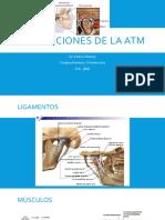 DISFUNCIONES DE LA ATM.pptx
