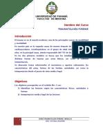Curso Traumatologia Forense Modulo 2 PDF