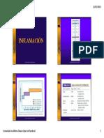 Clase 02 Inflamación y Procesos de Cicatrización.pdf