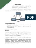 Adaptación celular.docx