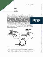 581.full.pdf
