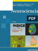 Neurociencia 3ed - Purves
