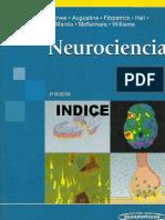 Neurociencia 3ed - Purves