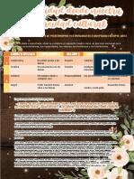 DPCC 19 CALLE FRACCHIA.pdf