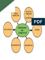 MAPA DIMENSIONES DEL CURRICULUM (PARA EL POWERPOINT)