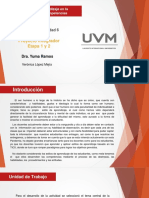 Act6-Proyecto Integrador-Etapa 2- VLM