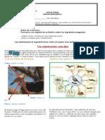 Guía de Trabajo_Articulo informativo 2_4to.docx