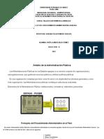 PRINCIPIOS DEL PROCEDIMIENTO ADMINISTRATIVO GENERAL